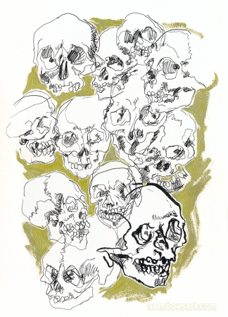 Skulls from the Mütter Museum - pen and marker, 2017.